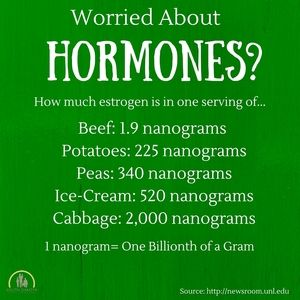 There_are_1.9_nonograms_of_estrogen_in_a_3_oz._serving_of_beef_compared_to_2000_nonograms_of_estrogen_in_a_single_serving_of_cabbage_copy.jpg