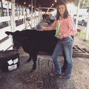 Senior Year 4-H calf.JPG